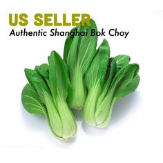 How tо Lose 15 Pounds Cabbage Seeds, Chinese Cabbage, Seeds For Sale, Lose 15 Pounds, Shanghai, Cactus Plants, Sprouts, Green Beans, Organic