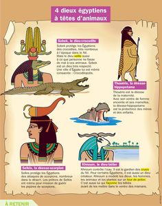 Fiche exposés : 4 dieux égyptiens à têtes d'animaux Ancient Egypt Activities, Egypt Map, Drawing Conclusions, French Expressions, Egyptian Symbols, Teaching French, Learn French, French Language, Social Studies