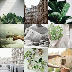 Urban herbology witch // moodboard