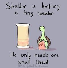 The Adorable Comic Strips Of Sheldon The Tiny Dinosaur Sheldon The Tiny Dinosaur, Sarah Andersen, Funny Quotes, Funny Memes, Jokes, That's Hilarious, Turtle Dinosaur, Dinosaur Pics, Zbrush