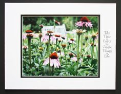 Purple Coneflowers and Garden Bench by JustforJoyCreations on Etsy, $25.00 #INSPIRATIONAL #MOTIVATIONAL #QUOTE #MATTED #GIFT #DECOR #PHOTO #ART #PRINT #HOME #OFFICE #WALL