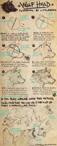 Littleshag: Wolf Head- TUTORIAL