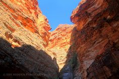 Discovery : Cathedral Gorge (of The Bungle Bungles) Discovery, Grand Canyon, Cathedral, National Parks, Nature, Travel, Naturaleza, Viajes, Cathedrals