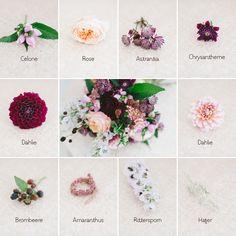 Brautstraußgalerie September - Übersicht Blumen - Welche Blumen gibt es und welche passen zusammen?
