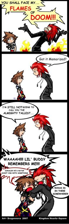 Kingdom Hearts: Flames of DOOM (you have to play the game to understand) :D I LOVE KH!!