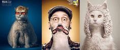Tiere in der Werbung #tiere #gutscheinlike #likeblog #lustige #bilder #interesant #hunde
