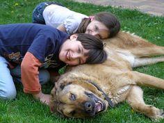 Aunque hacer y mantener amigos requiere esfuerzo, es una inversión que hace la vida más rica y más placentera. Sea cual sea la edad o las circunstancias, nunca es demasiado tarde para hacer nuevos amigos o reencontrarse con viejas amistades.