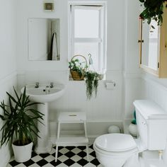 Bathroom plants Why do you need any Bathroom Plants Absorb Moisture and thats essential for small bathrooms If you dont have a ventilation fan or you are in the beginning. Contemporary Bathroom Lighting, Contemporary Vanity, Bad Inspiration, Bathroom Inspiration, Bathroom Inspo, Bathroom Goals, Bathroom Trends, Bathroom Ideas, Tropical Wall Decals