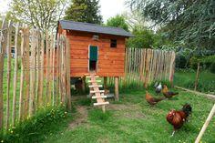 de Fruitberg - mooie blog en mooi kippenhok Garden Animals, Farm Animals, Coffee With Friends, Pets 3, Chicken Runs, Outdoor Spaces, Outdoor Decor, Down On The Farm, Hens