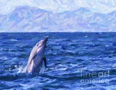A Long-beaked Common Dolphin, Delphinus capensis, jumping out of the Sea of Cortez, Baja California Sur, Mexico, with Isla Santa Catalina in the background. Common Dolphin, Baja California, Newfoundland, Dolphins, Whale, Mexico, Santa, Animals, Whales