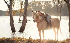 Картинки по запросу лошади в лесу на реке