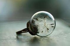 """ノスタルジックで美しい、""""タンポポの指輪""""は昔の記憶を留めているよう"""