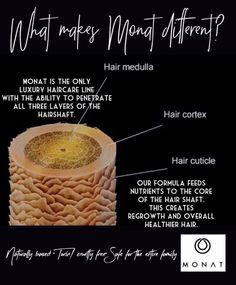 Why are MONAT hair care products different? - Why are MONAT hair care products different?forgetbadhair… - - http Monet Hair Products, Best Hair Care Products, My Monat, Postpartum Hair Loss, Hair Masque, Hair Repair, How To Make Hair, Natural Hair Care, Healthy Hair