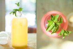 Use LavenderSummer Cooler: Herb Infused Water in The BULLETIN at Terrain
