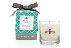 8.4 Oz Candle, Monterey Pine on OneKingsLane.com  --  55hr  --  25.00