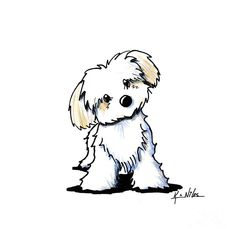 Featuring Havanese dog breed art by Contemporary PUP Artist, KiniArt (aka, Kim Niles). The post Havanese Sweetie Tile Coaster by KiniArt & CafePress appeared first on Travers Rottweilers. Cartoon Dog Drawing, Cute Dog Drawing, Drawing Cartoon Characters, Cute Animal Drawings, Cartoon Art, Cute Drawings, Dog Drawings, Dog Sketches, Animal Sketches