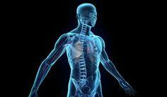 Δέκα παράξενες αλήθειες για το ανθρώπινο σώμα που ίσως δεν γνωρίζετε