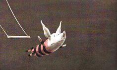 Del libro de Ian Falconer, Olivia salva el circo. Tengo debilidad por esta cerdita.