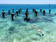 This unique, isolated national park highlights the beauty of the Florida Keys and offers diving, hiking, and historic tours. Florida Vacation, Florida Travel, Vacation Places, Vacation Destinations, Vacation Ideas, Travel Usa, Travel Tips, Port St Lucie Florida, Outfits Inspiration