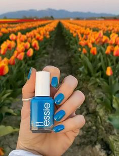 Essie Summer 2021 Collection - Livwithbiv Nail Polish Collection, Essie, Nail Art, Nails, Summer, Finger Nails, Summer Time, Ongles, Nail Arts