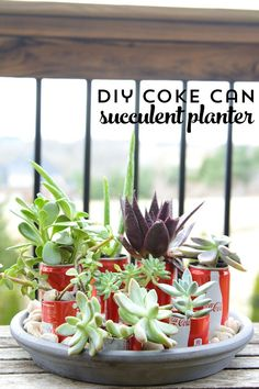 DIY Coke Can Succulent Planter- a clever way to recycle those cute mini coke cans