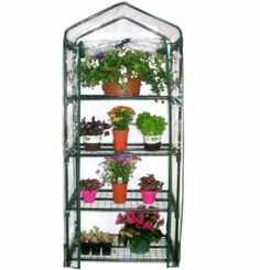 "Outdoor Small Planthouse 4 Flat Trays Storage Protection Gardening Set  Give your seeds, seedlings, and young plants an early start in this compact greenhouse. Ideal for small backyards or homes where space is an issue; place on a deck, patio, or balcony. Quality construction and materials to last many seasons. Four 18"" deep shelves for pots and seed trays. Strong powder-coated tubular steel frame with simple push-fit assembly that requires no tools. Clear polyethylene cover and roll-up…"