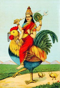 'Bahuchar Mata' is a Hindu goddess. Her followers believe in non-violence and consider killing of all animals and creatures a sin. Parents desirous of children and parents of new born children having physical disability or for their well being offer various offerings to Mataji with devotion.