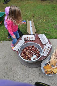 acorns, egg boxes. ramps - lots of loose parts play ideas on this website