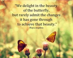 """We delight in the beauty of the butterfly, but rarely admit the changes it has gone through to achieve that beauty."" – Maya Angelou"
