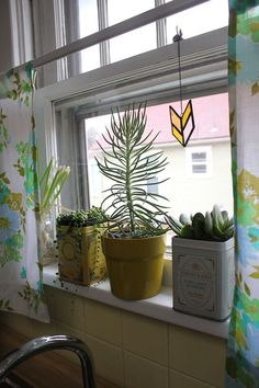 tins + succulents + the sweetest curtains made from vintage sheets