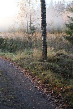 Syksyllä // In the fall