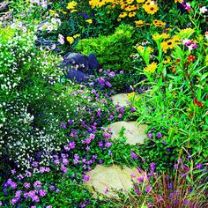 Butterfly garden from Sunset magazine
