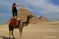Camel Surfing at the Great Pyramids of Giza, Egypt
