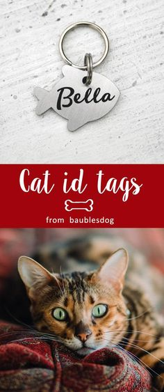 Fish id tag for cat, Dog Tag, Customized Pet ID Tag Name Tags, custom two-sides tag, cat tag, id tag for dogs, id tag for cat, dog lover gift, Customized Pet ID Tag, dog collar, id tag design, id tag diy, keep calm and call my mom, kitty name