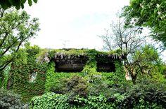 Angoli fioriti #green #beauty #angolifioriti #milano #milanoseibella #igersmilano #milanodavedere #milanodascoprire #wheremilan #milano_in #loves_united_milano #milanoedintorni #volgomilano #vivomilano by freeturtle