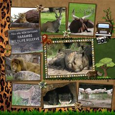 Kilimanjaro Safaris - Page 6 - MouseScrappers.com