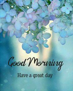 Good Morning Beautiful Pictures, Good Morning Nature, Beautiful Morning Messages, Good Morning Friday, Good Morning Photos, Good Morning Flowers, Good Morning Good Night, Good Morning Wishes, Good Morning Sunrise