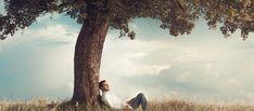"""Patrice Bouchardon : """"Les arbres aussi peuvent nous soigner"""""""