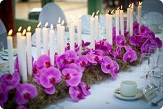 Candles running down the table with moss + moth orchids. So lovely and romantic! Helpful hint: If you're getting married in Corpus Christi city limits, candles be encased in glass) Orchid Centerpieces, Wedding Centerpieces, Wedding Table, Wedding Bouquets, Wedding Flowers, Wedding Decorations, Wedding Candelabra, Wedding Fair, Wedding Blog