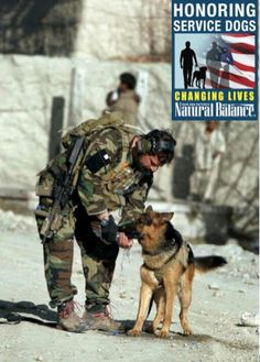 Military dogs                                                                                                                                                                                 More