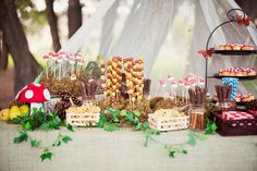 From ariaphotographyonline.com >> dessert table for a woodland themed party