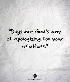 Dog's are God's Way of Apologizing for Your Relatives!!! Amen!!! That's why I have so many lol