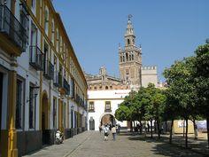 Giralda from Plaza Patio de Banderas, Seville   | Flickr - Photo Sharing!