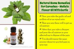 23 natural home remedies for earaches in adults show you 23 natural ways to treat earaches in adults fast and effectively at home. Home Remedies For Earache, Natural Home Remedies, Health And Wellness, Health Care, Health Tips, Diffuser Recipes, Healthy Lifestyle Tips, Essential Oil Uses