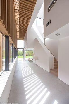The double height entrance hall means that when the light hits the timber slats on the side of the house it creates a stunning vision inside