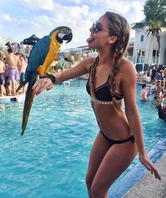 I'd love it if the parrot just bit her tongue // pinterest: karlirowl ♢♢♢