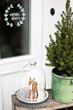 Love the sweet little deer Christmas decorations! {via hilarydempsey.files.wordpress.com}