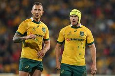 Australia dared to keep on picking Quade Cooper at fly-half for the World Cup Quade Cooper, Rugby News, Wales Rugby, Rugby World Cup, Australia, Sports, Hs Sports, Sport, Australia Beach