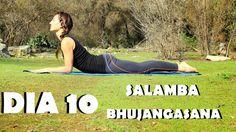 Elena Malova: Día 10 - Salamba Bhujangasana Yoga Challenge #malovayogachallenge1