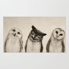 The Owl's 3 Area & Throw Rug Perfect bathroom rug !!